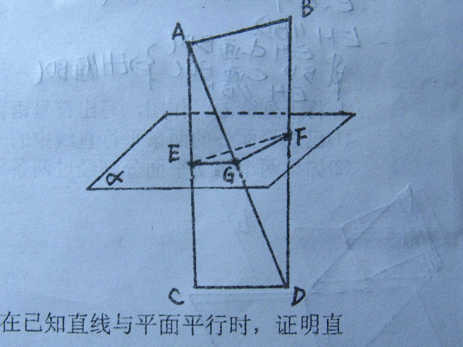 的性质_立体几何