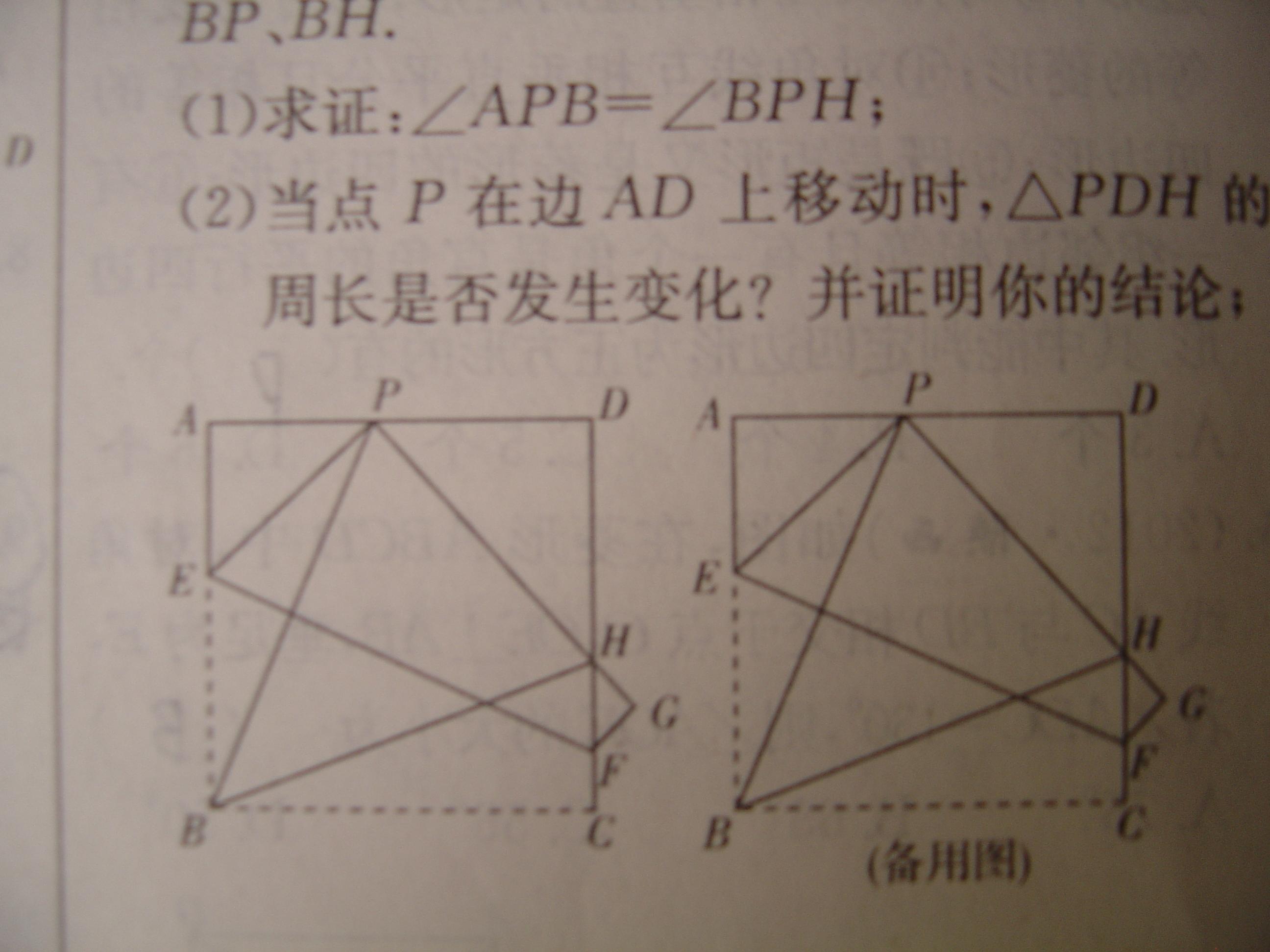 数学几何折叠问题_初二数学几何图形的初步认识图片
